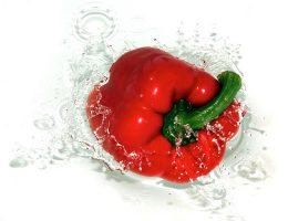 gevulde paprika met tomaat