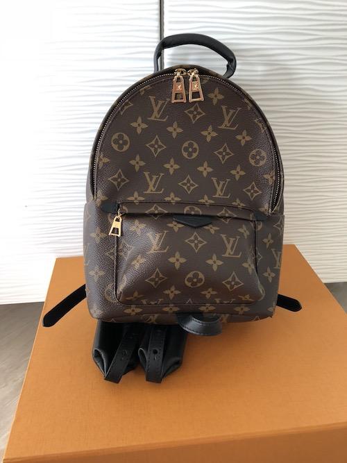 32529b99837 Mijn laatste Louis Vuitton aanwinst: de Palm Springs PM rugtas ...